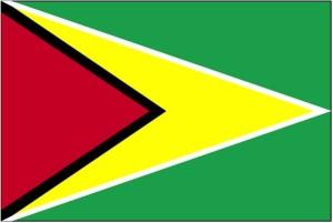 zastava, Gvajana