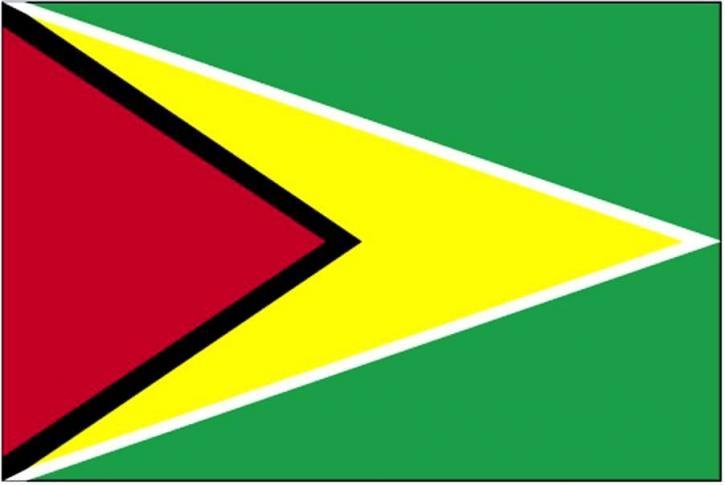 Flagge, Guyana