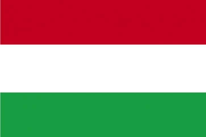 플래그, 헝가리