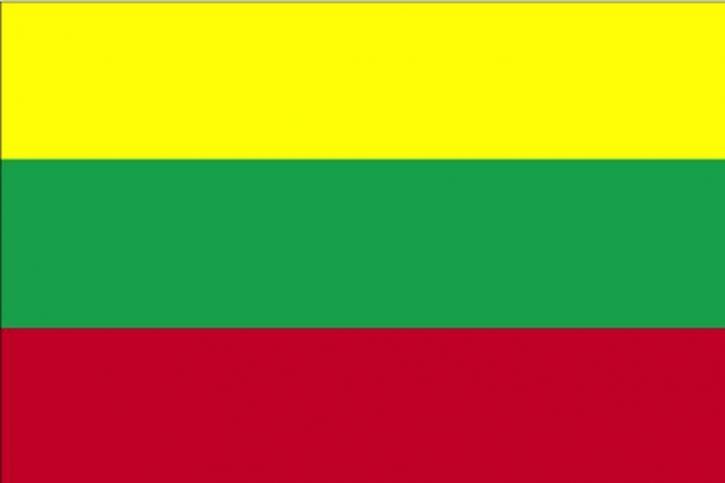 Flaga, Litwa