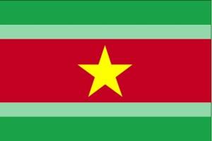 flagget, Suriname