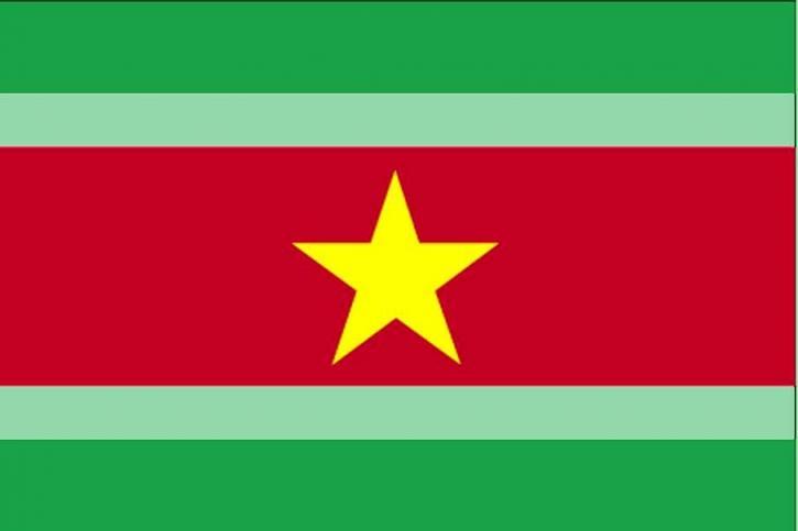 플래그, 수리남