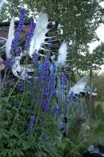virágok, front, agancs