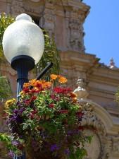 fleurs, lampe, parc