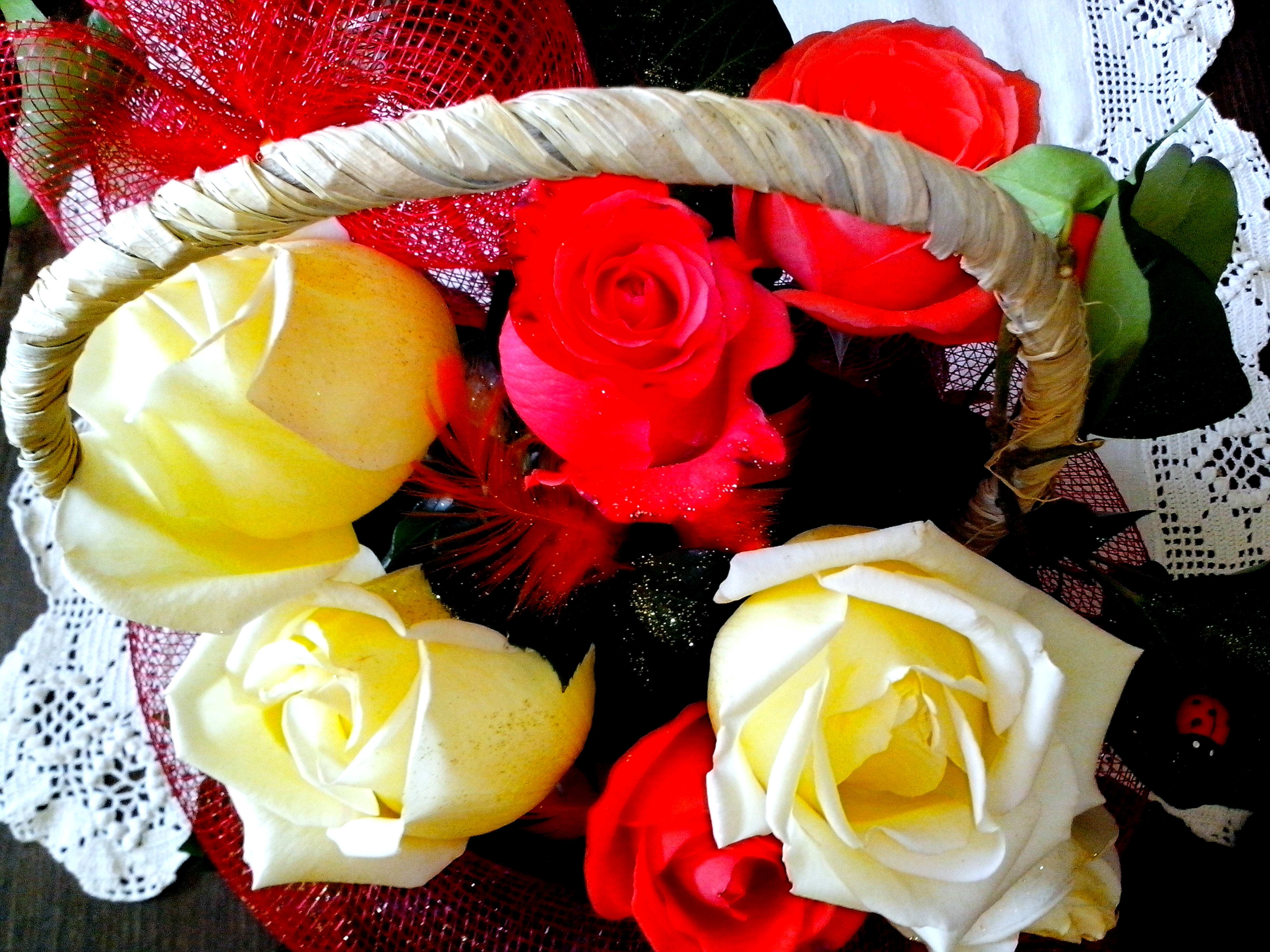 Free photograph; yellow, red, roses, arranged, basket, flowers