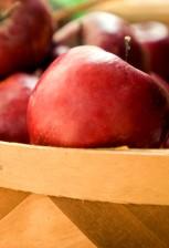 de près, panier, Rome, la beauté, les pommes