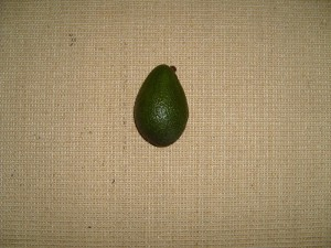 avocado, fruit, persea, Americana