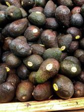 haas, avocados, fruit