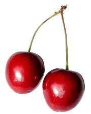cerise, fruit, fond blanc