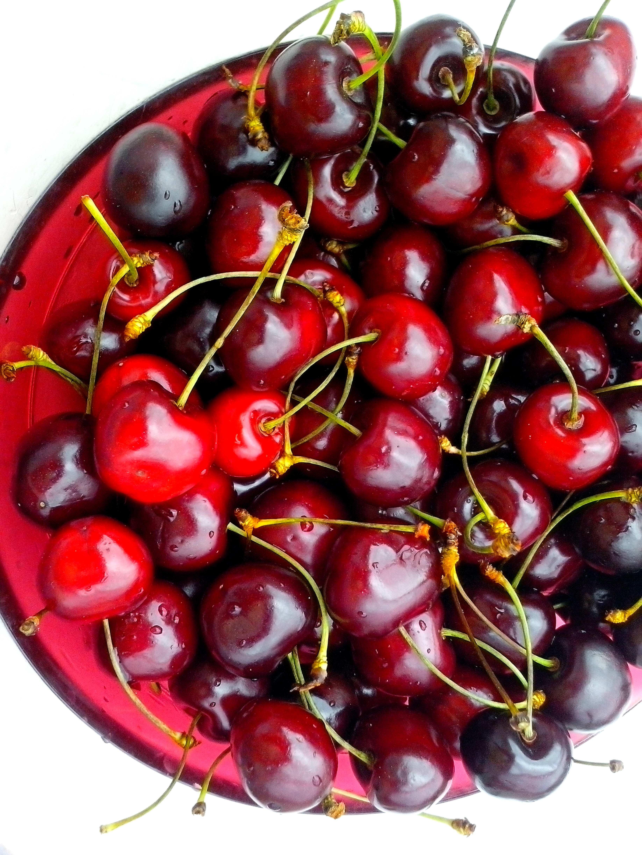 Free photograph; ripe, cherries, bowl, white, background