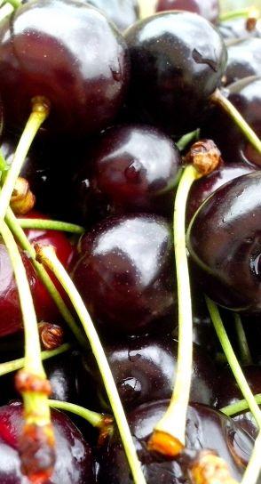 ripe, cherries, drops, dew