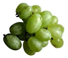 yeşil, üzüm, meyve
