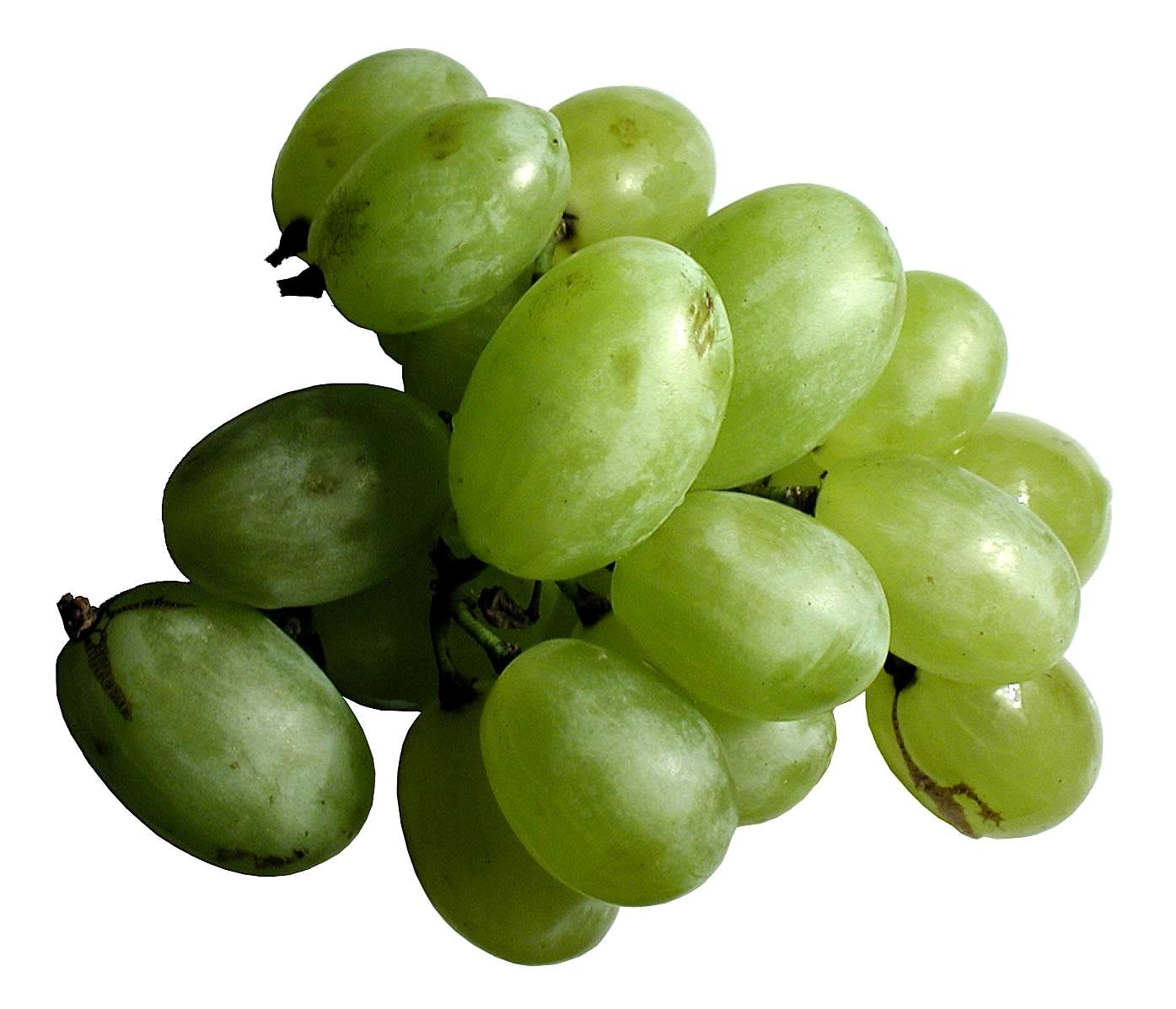 Plants Low Light Free Picture Green Grape Fruit