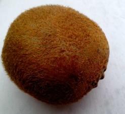 kiwi, fruit, hairs, kiwi, fruit