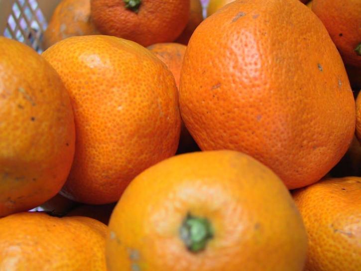 νόστιμα, γιαπωνεζα, satsuma, πορτοκάλια, φρούτα