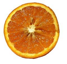 orange, sliced, white background