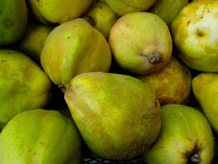 ripe, big, fruits, quince, fruit