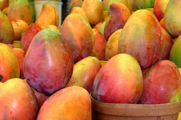 Sør Afrikas, mango, venter, behandling, ferske klippe, frukt, anlegg, shipping, forhandler