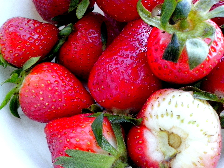 Free photograph; beautiful, strawberry, fruit, leaves