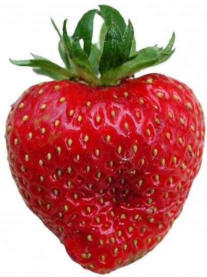 jagoda, voće