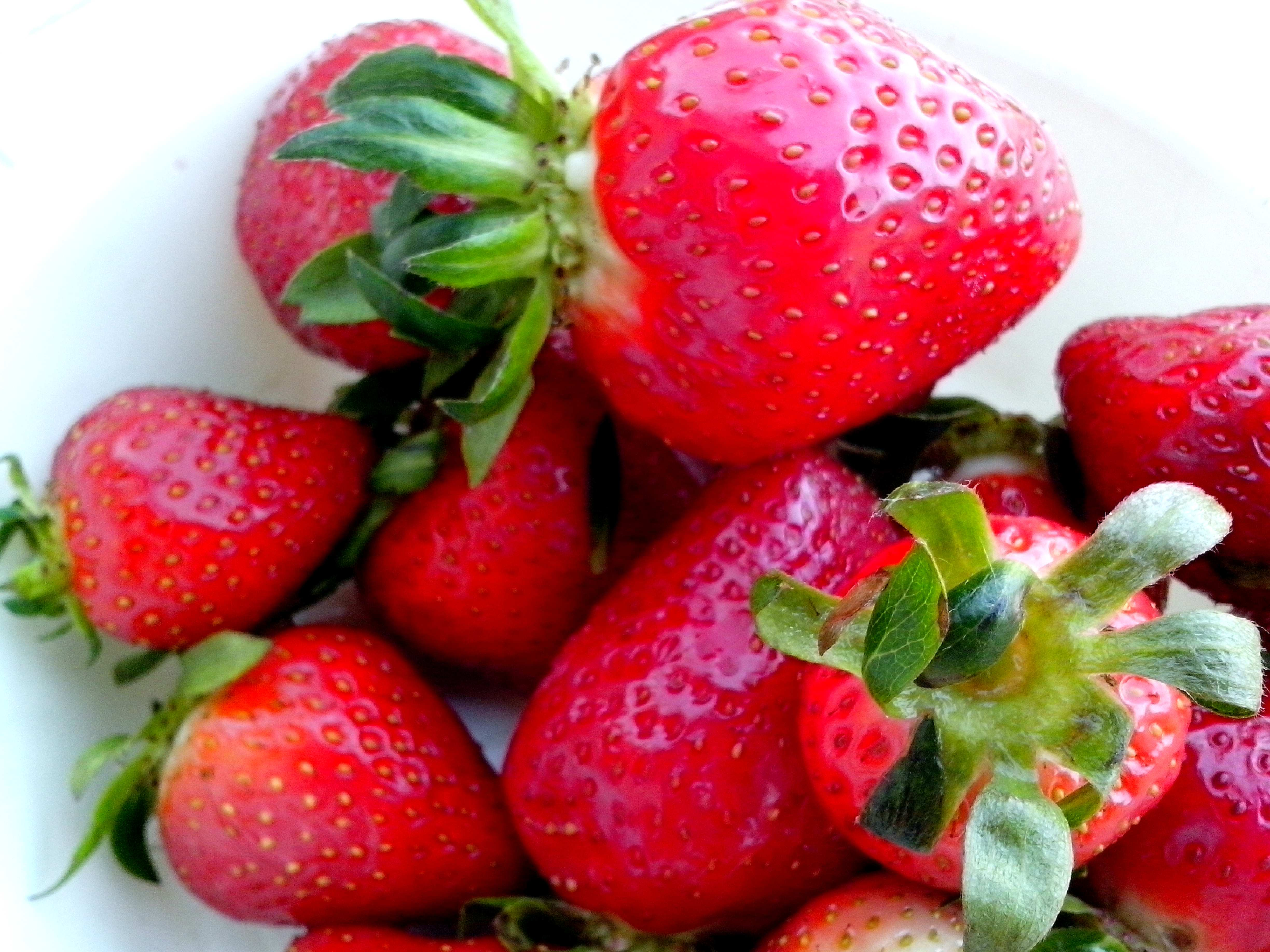 Free photograph; tasty, strawberries, fruits