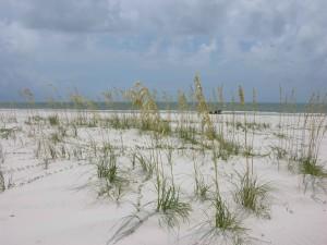 kaura, meri, ocean, breeze, aalto