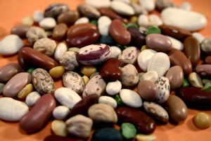 up-close, dried, beans, assembled, mixed, pile