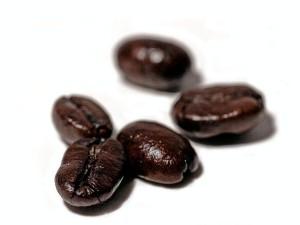 café, haricots, photo