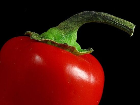 peppers, red, stems