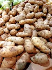 idaho, pommes de terre, affichage, marché