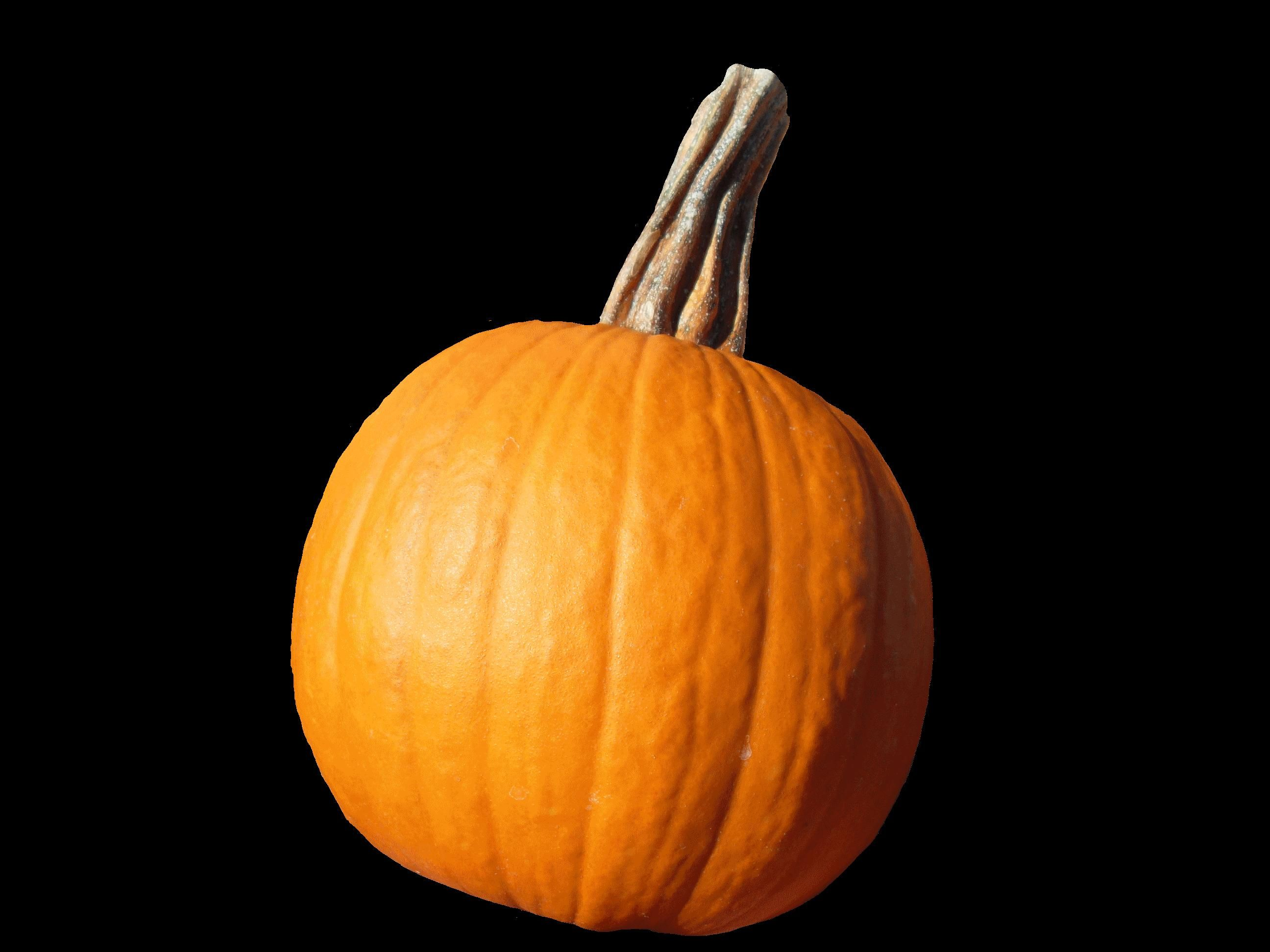 free picture vegetable pumpkin