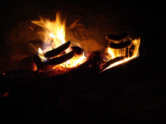 hot, dogs, campfire