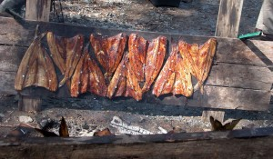 grill, fumé, viande, poisson, alosa sapidissima