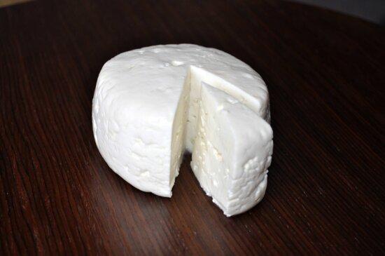 cheese, cows, milk