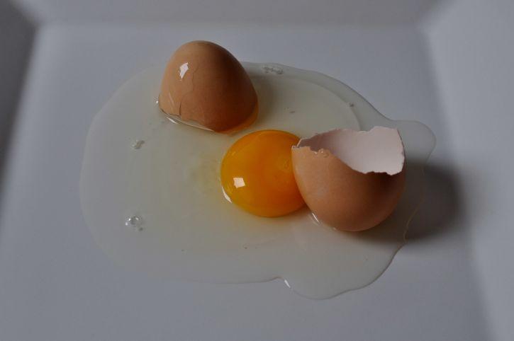 kuřecí maso, vejce, žloutek