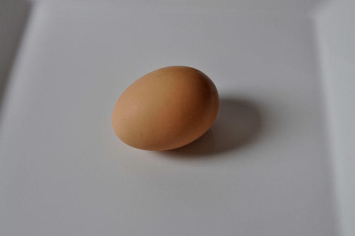 close, chicken, egg