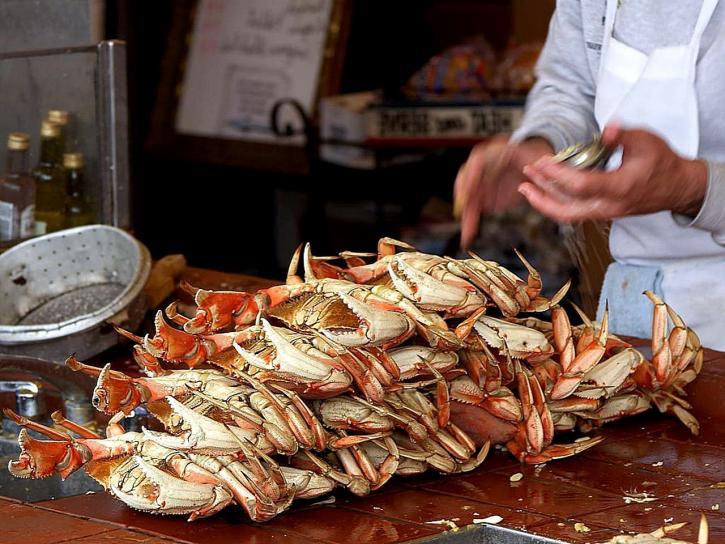 dungeness, crabe, pêcheur, quai