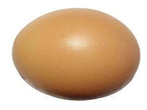 яйце, бял фон