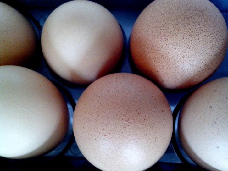 eggs, fridge