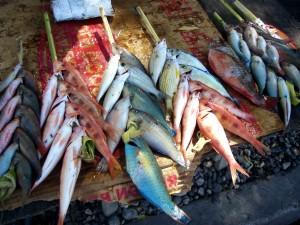 fish, sale, market