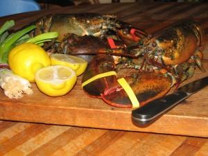 lobsters, food