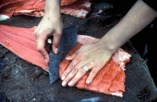 processing, salmon, fish, meat
