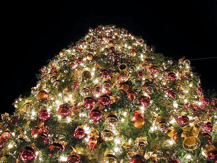 arbres de Noël, orniments
