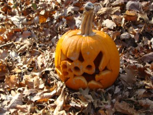 jack, lantern, pumpkin, leaves