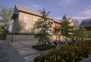 floraison, patio, devant, maison