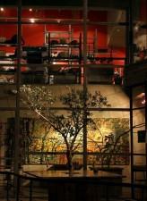 vilda, Jordanien, främjar, naturen, baserat, sysselsättning, hantverk, butik, café