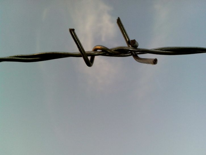 barbed, wire, light, background