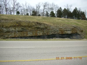 boone, chattanoga, shale, contact, outcrop