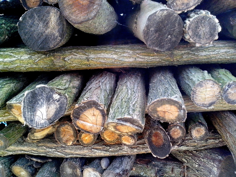 Free photograph; complex, firewood