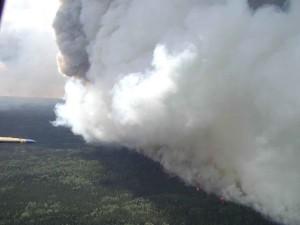 aérienne, la photographie, grand, blanc, feu, fumée, forêt, feu